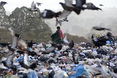 Fotos produzidas pelo Senado (Senado Federal) Tags: bie lixo resíduossólidos entulho reciclagem catador lixãodaestrutural criança políticanacionalderesíduossólidos brasília df brasil bra