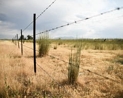 170702-fence-barbed-grass-grasses.jpg (r.nial.bradshaw) Tags: rnialbradshaw royaltyfree attributionlicense creativecommons stockphotography stockphoto fence image 2470mm28 barbedwire grass desert rural trespass trespassing