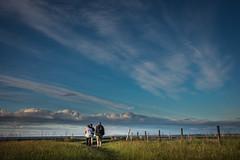 DSC_4485 (Evo800) Tags: walks cooper sky grass cloulds sunset water forth scotland nikon d610 deer skylark