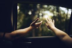 Catching Light (NoelleBuske) Tags: light hands window driving lifestyle nikon noellebuske noellebuskephotography bokeh car drive catchinglight sunlight blueridgeparkway color