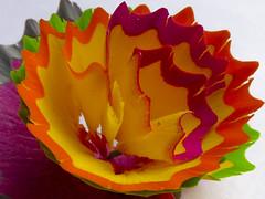 P1140725 (gijavi_2000) Tags: colores flor lápiz macro macrofotografía