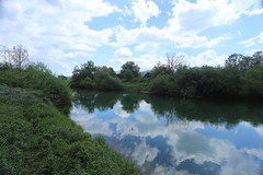 2017-05-12 12-09-04 - IMG_8711 (rudolf.brinkmoeller) Tags: wandern slowenien laibachermoor ljubljanskobarje landschaft natur ljubljanica
