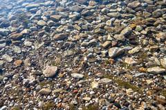 Донное (akk_rus) Tags: 2470 28 nikkor nikkor247028 nikon d800 nikond800 prespa lake macedonia македония преспа озеро преспанско езеро преспанскоезеро prespasee fyromskopjeetcisnotmacedonia