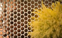 20170712-DSC_1380.jpg (Jorge A. Martinez Photography) Tags: nikon d610 fx sigma24105 condo kitchen bath full home remodel modern contemporary lux wood floors light caesarstone ckd renovation losangeles