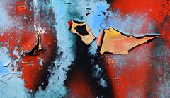 Peeling Paint (davidwilliamreed) Tags: old rusty crusty metal peelingpaint rust patina decay weathered textures oxidized oxidation abstract vividcolor