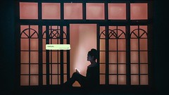 347/365 Never Answered (Katrina Y) Tags: selfportrait night text message love light woman window silhouette 2017 365project manipulation photoshop surreal surrealphotography fineart conceptual creative concept cinematic phone mood