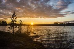 Juhannusaaton auringonlasku Kerimäellä 2017 (kimblenaattori) Tags: sunset sun auringonlasku aurinko lake lakeview finland summer serene rmc tokina 17mm f35 landscape järvimaisema