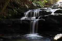 Blue Mountains (RossCunningham183) Tags: bluemountains sydney australia rockformations waterfall falls leuracascades nationalpark leura