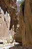 The Narrows at Zion (jocelyncoblin (on & off)) Tags: utah jocelyncoblin slotcanyon slot canyon river hike travel usa water wanderer beauty adventure exploration hiking ilovenature nophotoshop zion zionnationalpark virginriver vacation nature