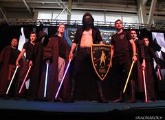 TGSSpringbreak_LesGardiensDeLaForce_044 (Ragnarok31) Tags: tgs springbreak toulouse game show gardiens force jedi star wars obscur art martial combat
