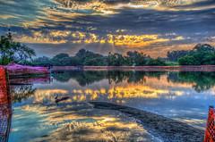 Sunrise on the Lake (Michael F. Nyiri) Tags: kenmalloyharborregionalpark lakemarchado california southerncalifornia harborcityca canonflickraward