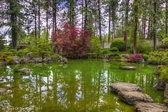 "Japanese Garden (jimgspokane) Tags: japanesegarden spokanewashingtonstate ""nikonflickraward"" otw"