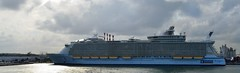 Liberty of the Seas (Jeffrey Neihart) Tags: jeffreyneihart nikon nikkor nikond5100 nikon1855mm ship caribbean royalcaribbean libertyoftheseas oasisoftheseas fortlauderdale florida
