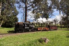 FET (michaelgreenhill) Tags: pbr nobelius victoria climax australia 1694 trains emerald supermancorner steam au