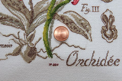 Orchidee - Veronique Enginger (sticksuse) Tags: kreuzstich crossstitch orchidee veronique enginger