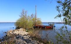 Steinhuder Meer (03) (Stefan_68) Tags: deutschland germany niedersachsen lowersaxony steinhudermeer natur nature see lake boot boat segelboot sailingboat wasser water
