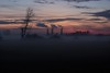 Unbekann-10 (wolfgangschiller) Tags: abend abenddämmerung abendrot badenwürttemberg baum bäumesträucher deutschland dämmerung europa himmel hockenheim lebewesen nebel tageszeiten wetter witterung wolken zeit