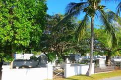 Key West (Florida) Trip 2016 2221Rif 4x6 (edgarandron - Busy!) Tags: florida keys floridakeys keywest cemetery cemeteries keywestcemetery grave graves tomb tombs