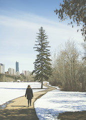 around the tree (rockinmonique) Tags: edmonton spring snow tree city building light shadow person portrait 52in52 family moniquew canon canont6s copyright2017moniquew