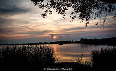Day 169. (lizzieisdizzy) Tags: sunset sundown country hosey mere water broad broads serene peaceful beautiful pleasant tree trees foliage reed reeds sun reflect reflection reflections leaves walkway wood boat hut intense howiemarsh picturesque beatuiful