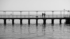 F4977 ~ The pier... (Teresa Teixeira) Tags: algarve culatra culatraisland pier holidays bw blackandwhite blackwhite teresateixeira