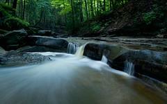 Spencer Gorge (Thankful!) Tags: gorge evening longexposure brook creek stream rocks waterfall falls cascade hfg hamiltonwaterfalls