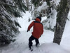 Pro Ride Camp Tree runs on Blackcomb