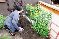 Paula Photoshoot (18 of 48) (City of Austin Office of Sustainability) Tags: gardening netzero netzerohero austin austintexas organic composting family recycling reducereuserecycle