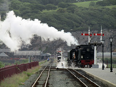 Garratt #87 - Welsh Highland Railway, Porthmadog 2017 (Dave_Johnson) Tags: gwynedd porthmadog welshhighlandrailway welshhighland rheilffordderyri rheilffordd eryri whr narrowgaugerailway narrowgauge greatlittletrainsofwales railway rail steamrailway wales steamengine steamtrain steamlocomotive steam train loco locomotive porthmadogharbourstation harbourstation station railwaystation britanniabridge hgg16 ngg16class garratt johncockerillcompany cockerill cob thecob bostonlodge