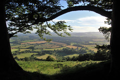 Quantock frame (OutdoorMonkey) Tags: quantocks quantockhills somerset tree trees silhouette fields countryside outside outdoor rural nature scenic scenery bagboroughhill willsneck triscombe westsomerset woods woodland