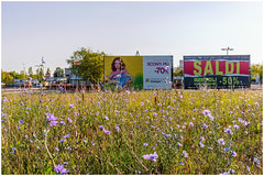 Modena, 2017 (Exit Imago) Tags: emiliaromagna italy modena advertisingsign billboard field flower mallow model sign woman