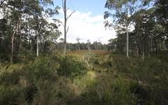 4450 Chaelundi Road, Dundurrabin NSW