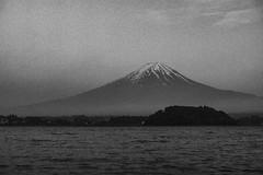 富士山|河口湖 Fujisan (里卡豆) Tags: olympus penf 25mm f12 pro olympus25mmf12pro lake mountain 富士山 japan 東京 tokyo fujisan 河口湖 kawaguchiko