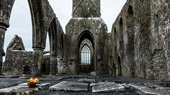 Alte Gemäuer (Dioscorea Mexicana) Tags: irland ruine lostplace alt verfallen friedhof gräber grab gotisch kirche kathedrale old