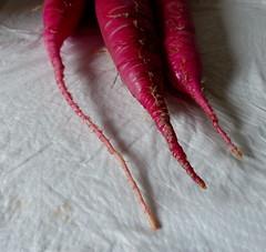 Diese Bananen kaufe ich nicht noch mal. (remember moments) Tags: dietmarvollmer red radish rettich vegetable food three 3