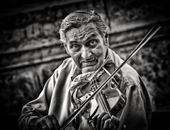 On the fiddle (Andy J Newman) Tags: candid streetphotography street portrait streetportrait nikon d500 silverefex busker muscian fiddler basillica basilica stephen