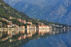20170423-Canon EOS 6D-4113 (Bartek Rozanski) Tags: skaljari kotor montenegro crnagora mediterranean boka bokakotorska fiord bay village town reflection water morning mountains