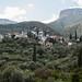 Vilas de pedra no meio das oliveiras