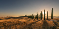 Italy - Agriturismo Poggio Covili (Toon E) Tags: 2017 italy tuscany sanquiricodorcia valdorcia trees sun sunset evening house mansion valley panoramic farm historic sony 7rm2 zeiss sonyfe2470mmf4 outdoors travelhay cypresses