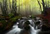 La cascade d'Orgon