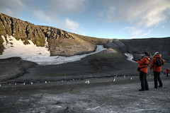 200,000 Chinstrap Penguins at Bailey Head, Shetland Islands, Antarctica (Scott Ableman) Tags: shetlandislands baileyhead chinstrappenguins chinstrappenguin chinstrap penguin nationalgeographicexpeditions lindbladexpeditions nationalgeographicorion antarctica parkas orange orangeparka