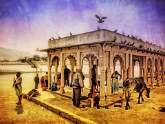 Incredible India series (Nick Kenrick..) Tags: hss india hindu