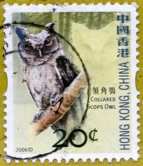 great stamp Hong Kong, China 20c Collared Scops Owl (Otus lettia,  Halsbandeule, Petit-duc à collier, gekraagde dwergooruil, 猫头鹰, сова, búho, coruja, Eule, フクロウ, بومة , gufo, uil, sova, Uggla) 切手 Briefmarke スタンプ Postzegel zegel zegels postzegel марки टिकट (stampolina, thx for sending stamps! :)) Tags: collaredscopsowl otuslettia halsbandeule petitducàcollier gekraagdedwergooruil 猫头鹰 сова búho coruja eule フクロウ بومة gufo uil sova uggla china commonwealth stamps stamp 切手 briefmarke briefmarken スタンプ postzegel zegel zegels марки टिकटों แสตมป์ znaczki 우표 frimærker frimärken frimerker 邮票 طوابع bollo francobollo francobolli bolli postes timbres sello sellos selo selos razítka γραμματόσημα bélyegek markica antspaudai маркица pulları tem perangko bird vogel birds vögel asien asia hongkong