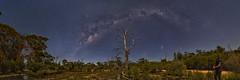 Moonlit Yornaning (Astronomy*Domine) Tags: moon night milkyway tree astrophotography astronomy astro panorama yornaning dam westernaustralia nightscape canon 6d samyang 14mm