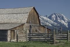 Most photographed barn (ewf_photography) Tags: pentaxk3 grandtetonnationalpark moultonbarn barn mountains