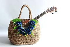 wicker basket (yooheeahn) Tags: basket flowerbasket ribbonlei ukulele hibiscus denim hawaiian hawaiianlei