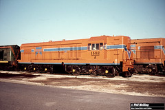 1648 A1502 Forrestfield 18 January 1981 (RailWA) Tags: railwa philmelling westrail a1502 forrestfield