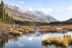 Colours of the Yukon (martinaschneider) Tags: yukon fall lake canada mountains trees tree sky bluesky clouds