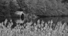 Loch Ard (val.moir) Tags: lochard aberfoyle