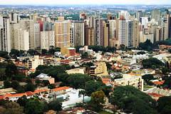 Curitiba, Paraná (walterantoniolivramento) Tags: curitiba paraná brasil parque do papa barigui panoramica torre oi polonia bosque joao paulo ii segundo